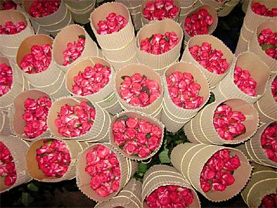 Ethiopian Flower export