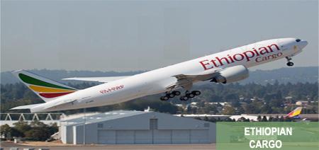 Ethiopian Airlines Cargo