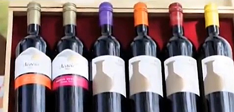 Castel introduces new wine, new bottle