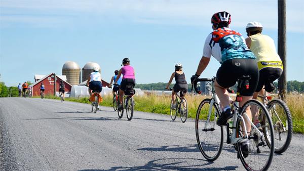Island Bike Tour, courtesy of Chris Howell.