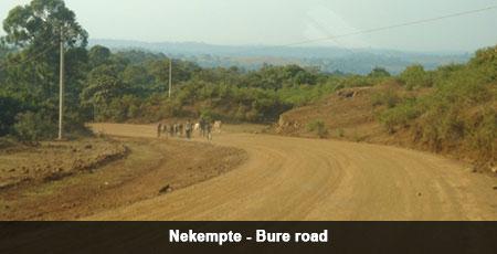 Nekempte Bure Road