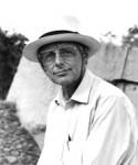 Professor David Phillipson