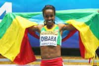 Genzebe Dibaba IAAF Continental Cup