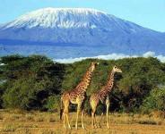Tanzania Tourism