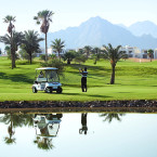 Egypt aims to become leader in golf tuition tourism