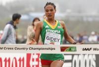Letesenbet Gidey (Getty Images) -
