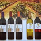 Castel Winery expands its vineyard to meet market demand