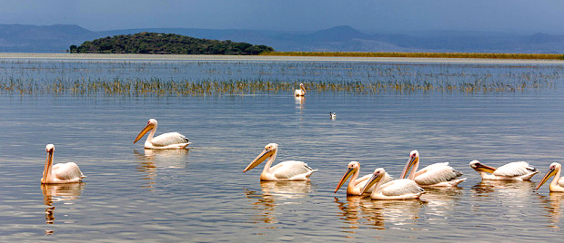 Lake Ziway, Ethiopia  Photo: Alamy