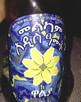 Melkam Addis Amet