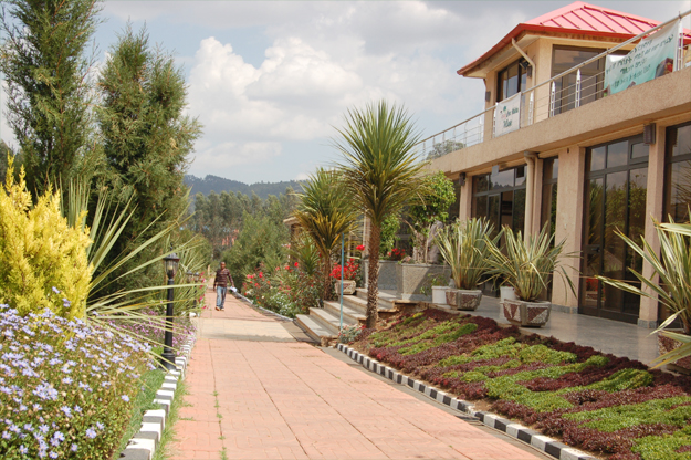 The magnificent Yaya Village ,an altitude training heaven (credit: Elizabeth Egan)